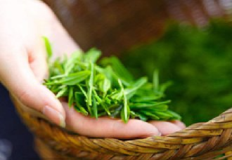 2019第三届中国昆明(国际)春茶周将于4月23日举办