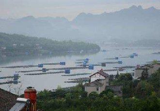 <b>农业农村部举行渔业执法工作专题新闻发布会</b>