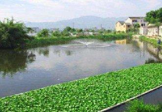 上海:农村生活污水处理率已达到75%