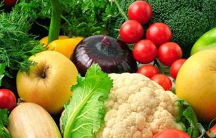 有机蔬菜种植助他走上发家致富之路