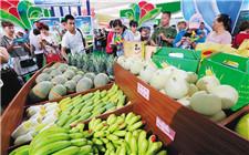 海南农产品线上直销24小时成交1100万