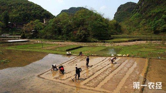 通江县开展农资打假专项行动 确保春耕顺利进行