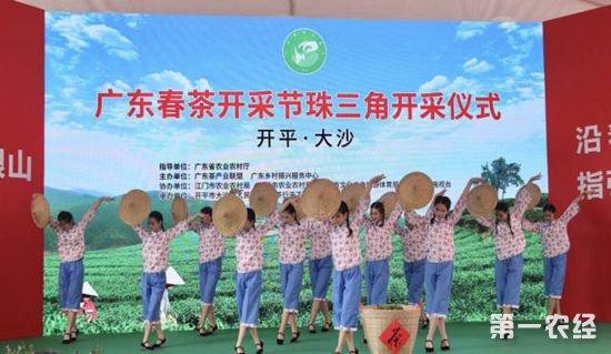 1011.茶,茶产业,春茶
