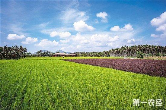 农业农村部分析今年春季病虫害趋势