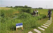 """北京市印发农村污染""""一保两治三减四提升""""治理方案"""