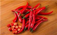 辣椒价格为何大涨?专家提醒勿盲目扩大种植