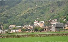 陕西省印发乡村振兴行动方案 2020年建成千个示范村