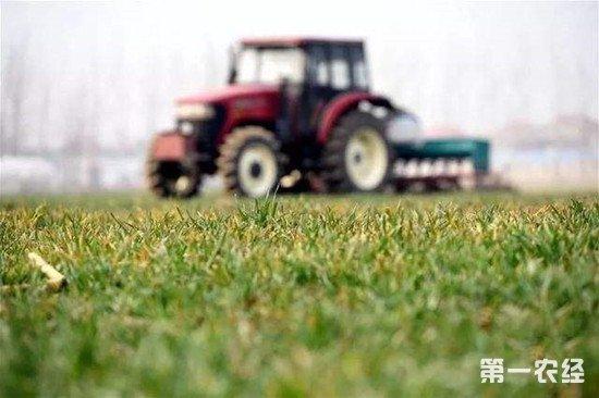 北京推出农机购置补贴APP 领取补贴只跑一次