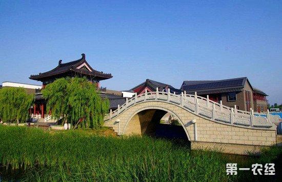 甘肃省板桥镇积极发展合作社 农业专业化促增收
