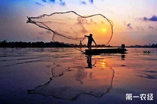 我国水域陆续进入禁渔期 专家表示水产品价格不会明显上涨