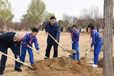 习近平大大为什么要在北京种这几种树?选择它们的理由!