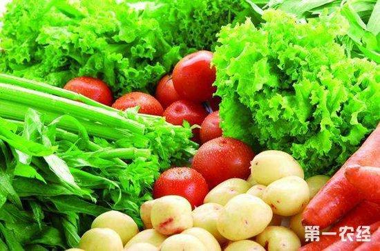 江苏盐城:本地蔬菜青黄不接 市区蔬菜价格居高不下