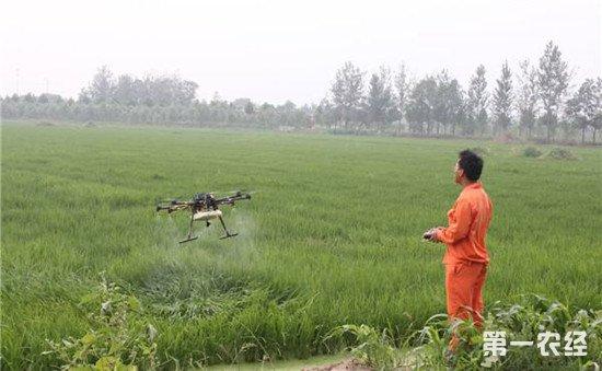 无人机解放劳动力 新科技助力农业高效生产