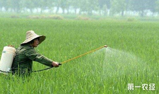 夏季使用农药时的注意事项 一定要做好防护措施