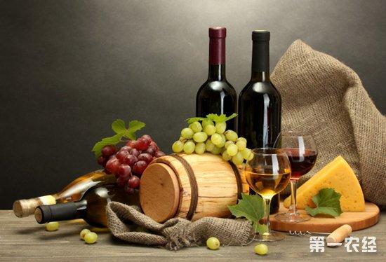 长城 法国 干红 干红葡萄酒 红酒 进口 酒 拉菲 葡萄酒 网 油画 张裕