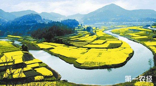 四川省今年将投入638.5亿元启动数百乡村振兴大项目