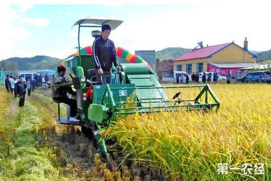 以组织带动农民致富 全国农业组织辐射1.27亿农户