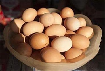 """湖北将正式启动""""土鸡蛋""""团体标准制定工作"""
