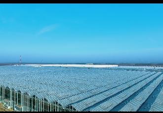 """中环易达:智能连栋玻璃温室不要着急建,运营管理小心这几颗""""雷"""""""