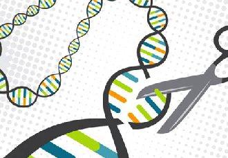 <b>基因剪刀可能为农业带来新的翻盘机会</b>