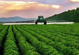 <b>广州将打造粤港澳大湾区农业科技创新高地</b>