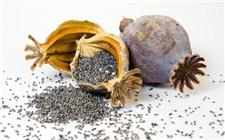 吃米粉后吗啡检测呈阳性 牵出一桩罂粟壳米粉案