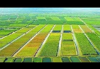 中国水溶肥平台,引领肥料行业高速发展