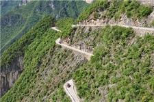 渝陕鄂三地开展长江上游跨区域林业生态环境保护协作