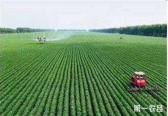 2019首届全国农业科技成果转化大会在成都拉开帷幕