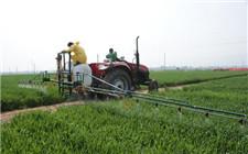 植保专业服务节约成本又高效 农民当起了甩手掌柜