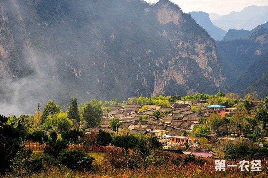 甘肃陇南多措并举 改善农村居住环境
