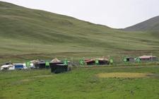 四川理塘县游牧部落群众全面试水现代畜牧业