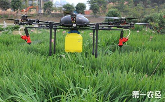 云南元谋县将贯彻落实化肥农药减量增效行动计划