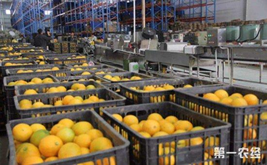 农产品加工