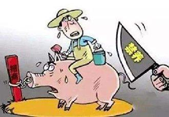 <b>广州市番禺区重新修订发布禁养区域通告</b>