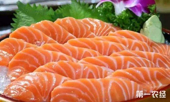 2019年下半年起三文鱼价格将持续下跌