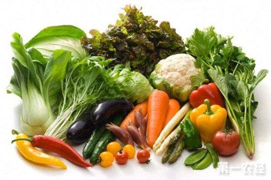 山西太原:本地蔬菜大量上市 蔬菜价格持续走低