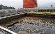 中央环保督察组点名四川泸州企业污染问题 泸州老窖在列
