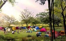 """公园草坪是帐篷""""禁区""""?官方回应:没有强制规定"""
