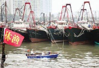 我国各省市地区各主要江河湖海已全面进入休渔禁渔期