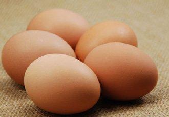 """<b>蛋价持续上涨,蛋商养殖户""""越涨越怕""""是为何?</b>"""