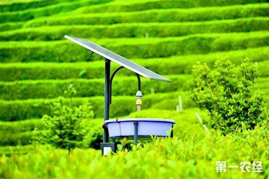 北京:加快发展农业高新技术产业