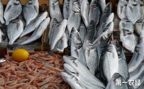 山东威海:小龙虾价格环比走低 鲜鱼价格同比有所偏低