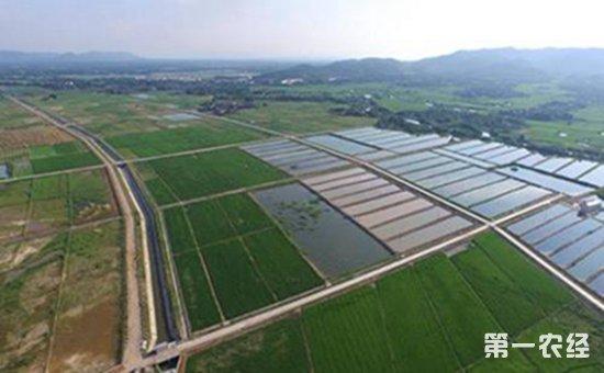 高标准农田