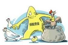 山东沂水县:农民养殖风险大 畜牧局落实保险惠农政策