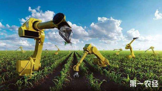 虫口夺粮保丰收,农业科技直通车立大功