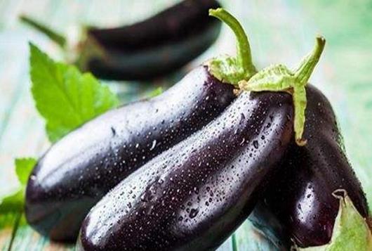 大棚茄子种一次能管几年,农户忙增收