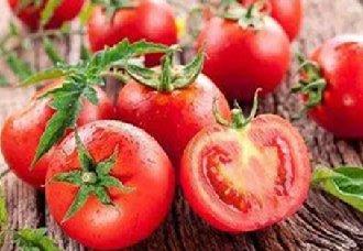 浙江丽水进行蔬菜生产安全检查工作 确保菜篮子安全