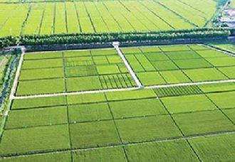 黑龙江规划到2020年建成1亿亩生态高产标准农田