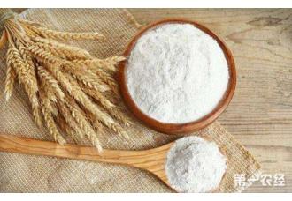 """<b>优质绿色小麦新品种:""""一控、两减、三高效""""</b>"""